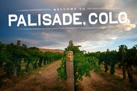 PALISADE WELCOME TO